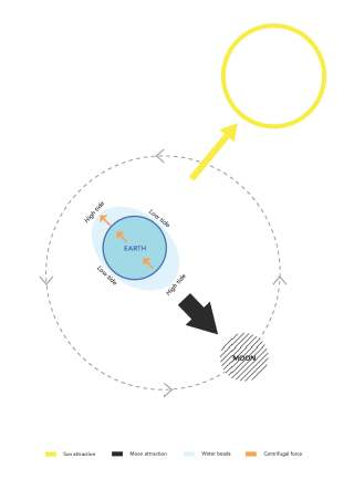 Übung 3 - Tides diagrams - Iuilia Miclea, Margaux Monzée, Andra Nicolescu_Seite_02