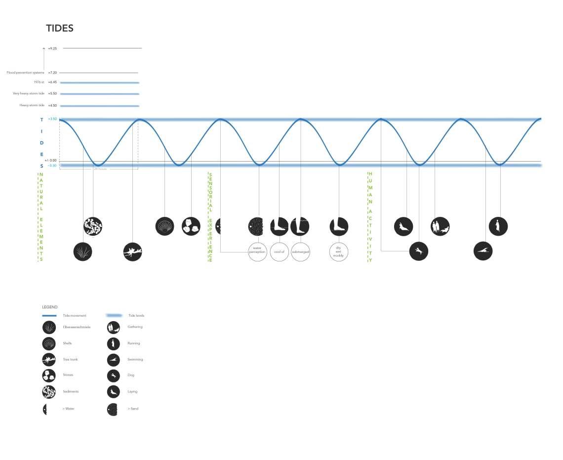 Übung 3 - Tides diagrams - Iuilia Miclea, Margaux Monzée, Andra Nicolescu_Seite_12